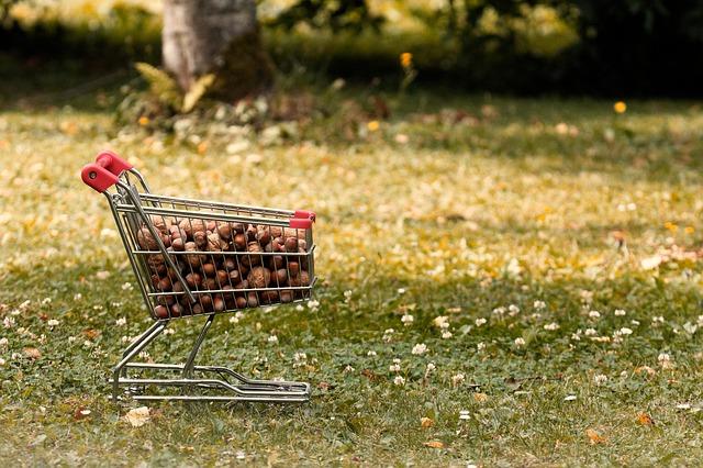 ショッピングカートに大量に入っている